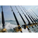 Boat Rods
